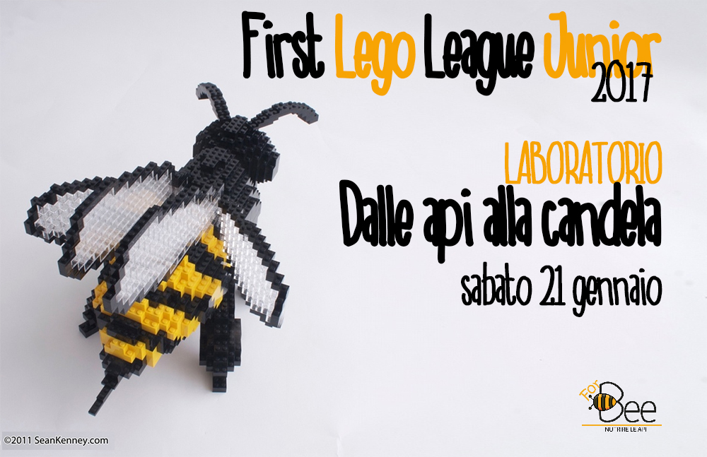 FIRST LEGO LEAGUE JUNIOR 2017 FORBEE API