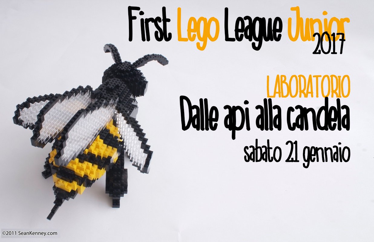 FIRST LEGO LEAGUE JUNIOR 2017